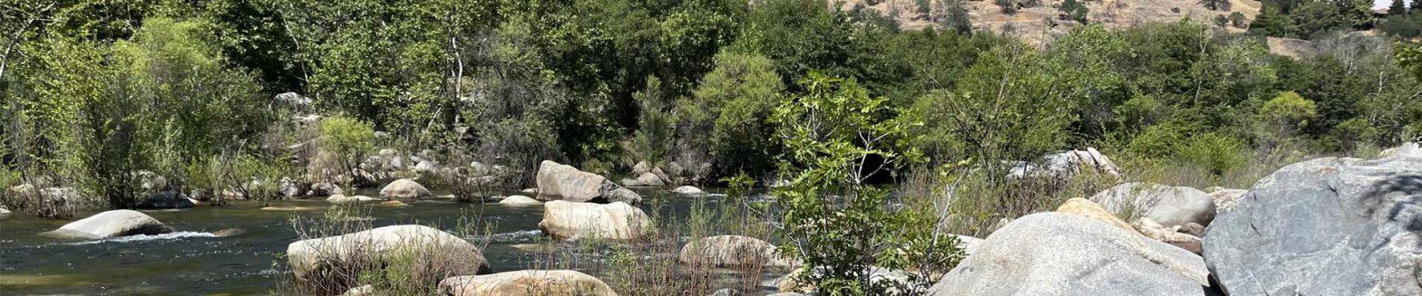 outdoor creek